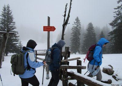094 na poti od Doma na Menini na vrh Vivodnik, 12.39
