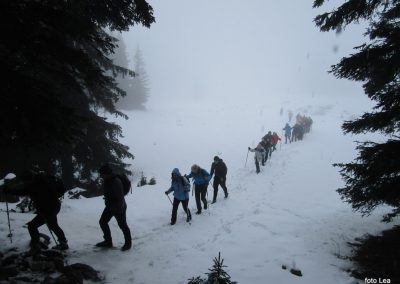 103 na poti od Doma na Menini na vrh Vivodnik, 12.51
