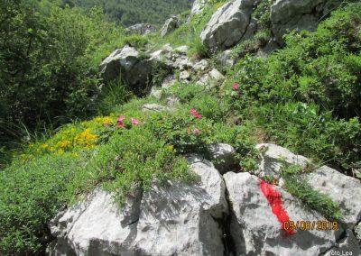 030 VELEBIT, vzpon na Konjevaćo 1381m, 10.11