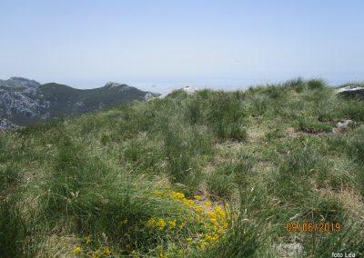 081 VELEBIT, na vrhu Konjevaće 1381m, 12.21