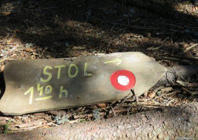 23 VZPON NA STOL, z Zabreške planine na Stol - počivališče pri klopci, 10.04