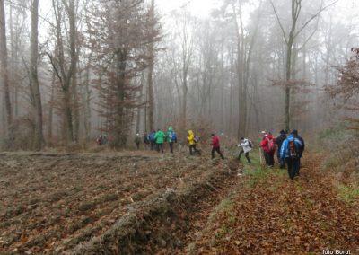 31 POHOD V NEZNANO, 8-12-2019, na poti od Grossmana do Vrbjaka, 11.11