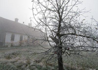 51 POHOD V NEZNANO - 8. december 2019, na poti od Grossmana do kmetije Vrbjak, 10.32