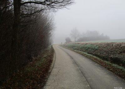 54 POHOD V NEZNANO - 8. december 2019, na poti od Grossmana do kmetije Vrbjak, 10.43